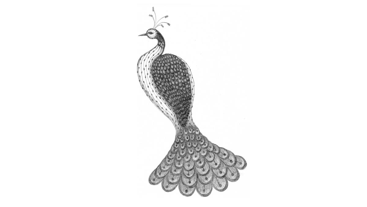 Dessins-Peacock3-2017